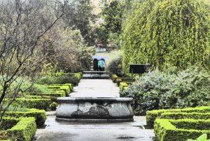 Jardin botanique de Madrid avril 2016